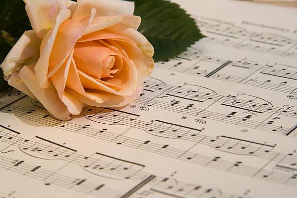 klassische musik - piano noten stock-fotos und bilder