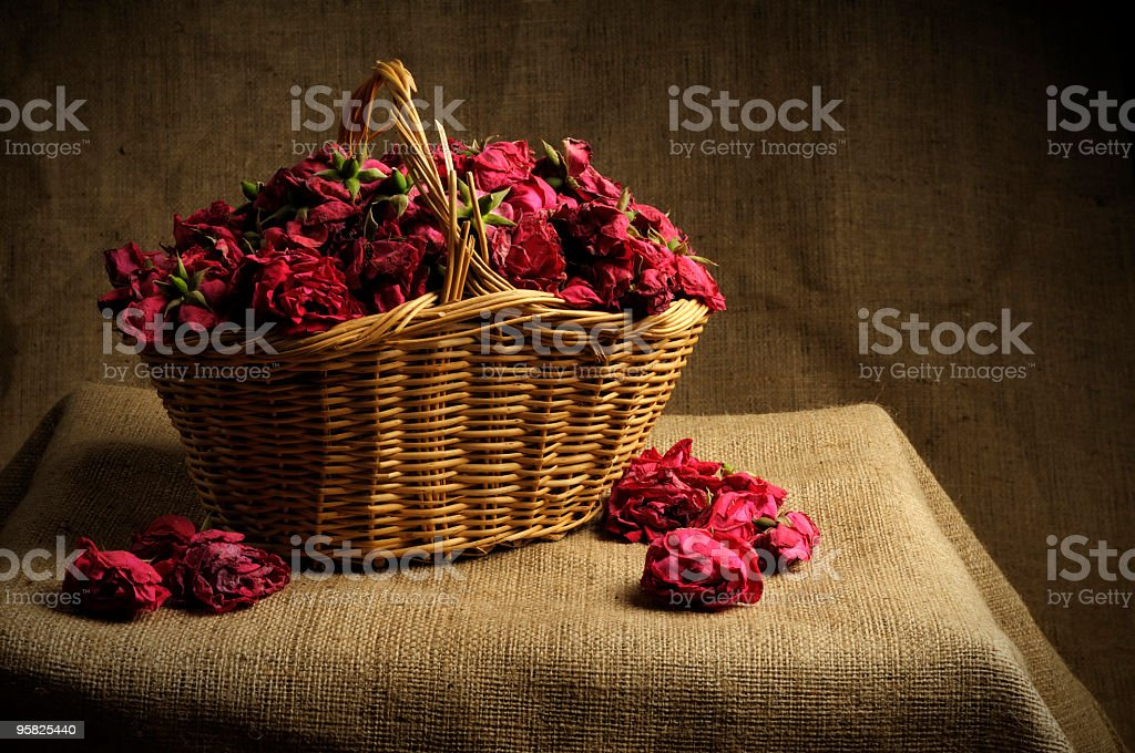 Classical Nature Morte royalty-free stock photo