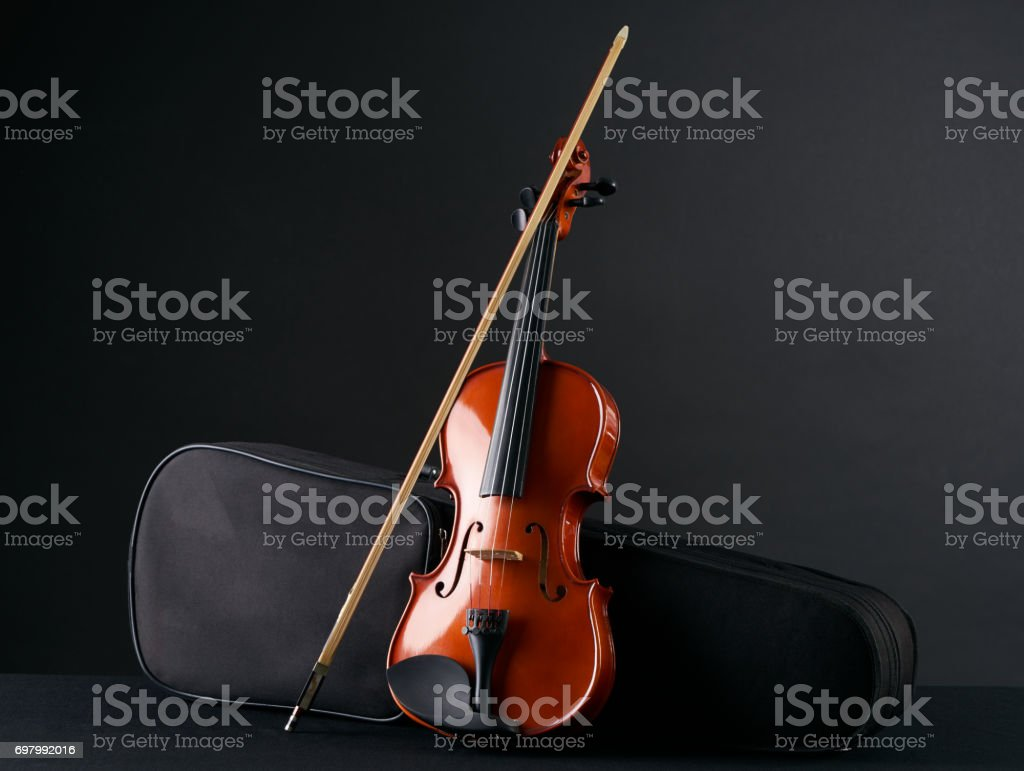 Classical wooden Violin with molded carrying black case. stock photo