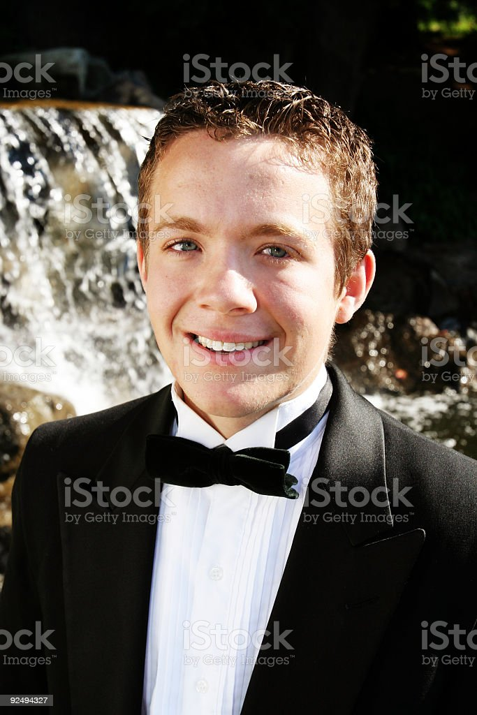 Classical Young Man royalty-free stock photo