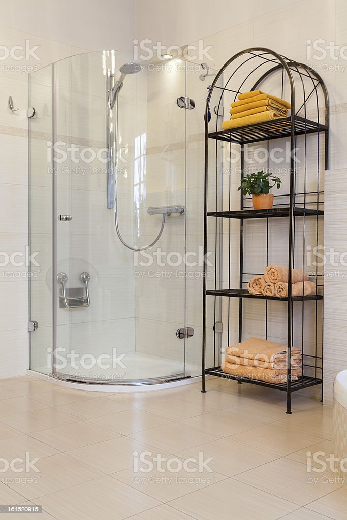 Classy house - shower royalty-free stock photo