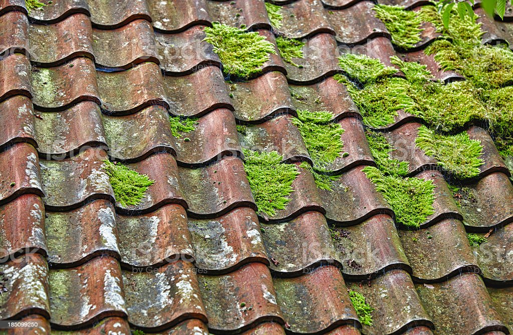Clay Roof Tiles and Moss stock photo