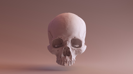 Clay Skull Front - 3d illustration 3d rendering - skull scan is from SCSU VizLab - thingiverse.com/scsuvizlab/about - (CC Attribution)