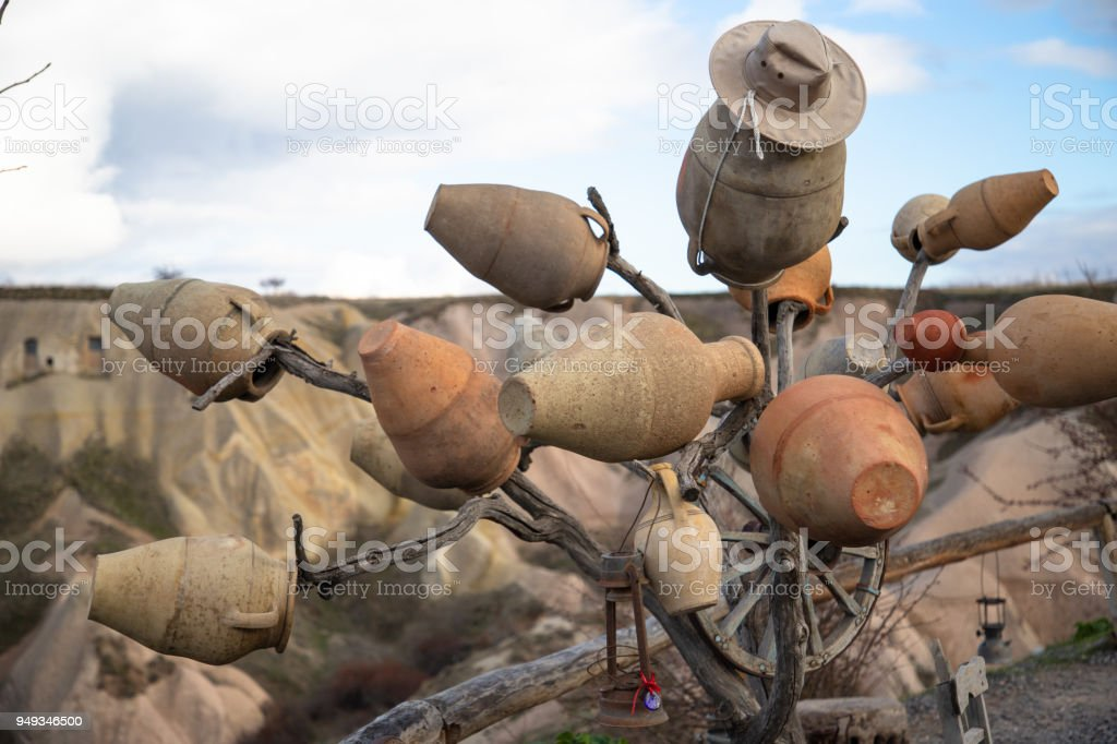 Claypot tree stock photo
