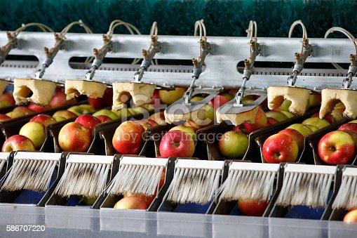 istock Clean and fresh apples on conveyor belt 586707220