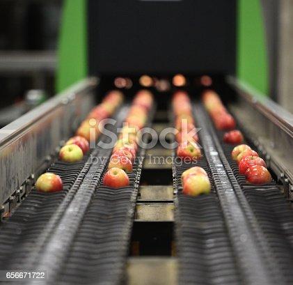 istock Clean and fresh apples on conveyor belt 656671722