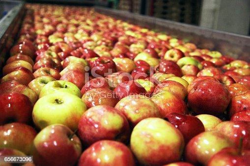 istock Clean and fresh apples on conveyor belt 656673096