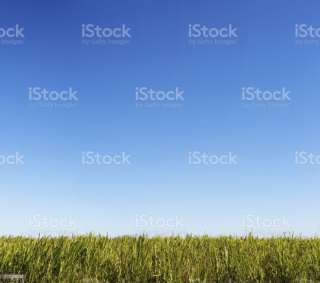 Clean and Green Farmland royalty-free stock photo