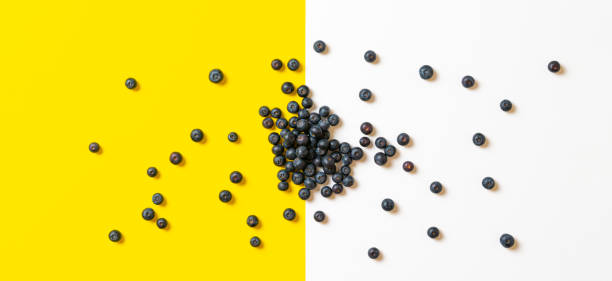 clean blueberry berries fruit isolated on the colorful surface, copy space, minimalist stock photo