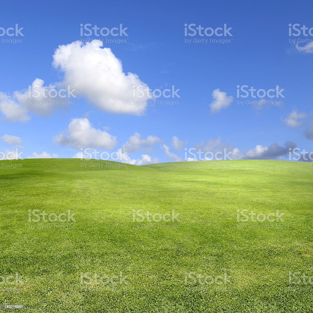 clean green landscape over clear sky stock photo