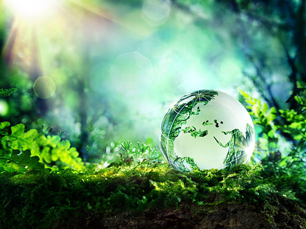clean green planet -  environment concept - environmental conservation stock photos and pictures