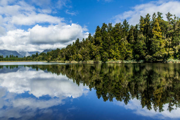 Clean lake mirroring blue sky and green trees stock photo