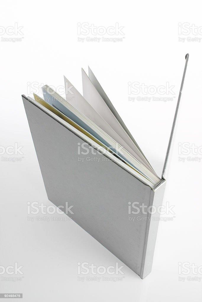 Reinigen Sie suchen BUCHEN Lizenzfreies stock-foto