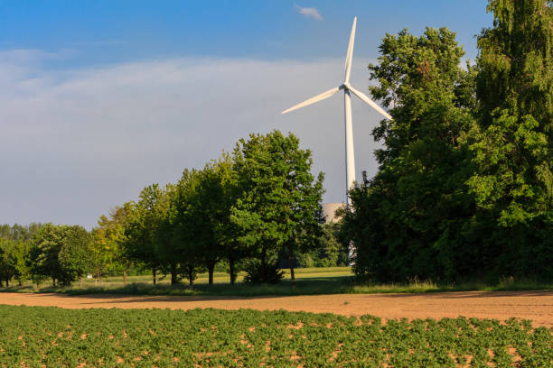 clean nature with wind power stock photo