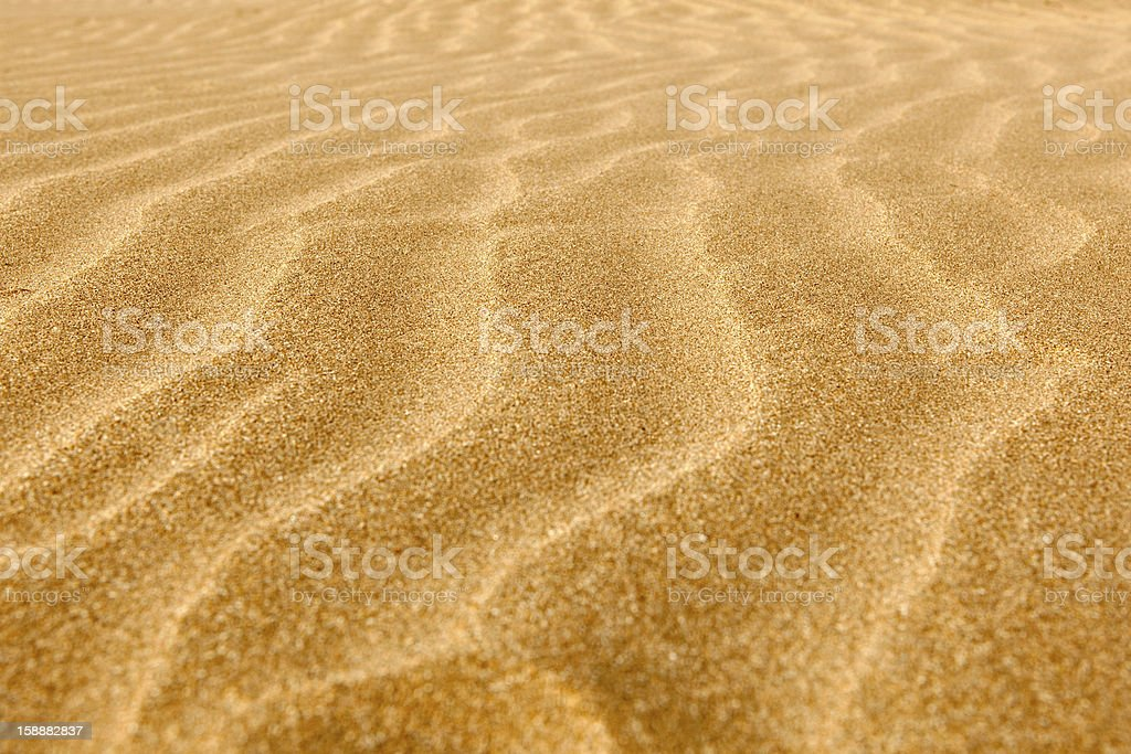 Clean rippled sand on the beach royalty-free stock photo
