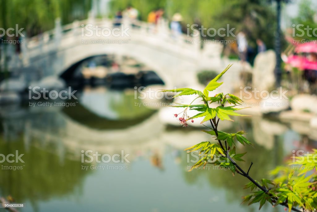 Clean River and Traditional Bridge in Regions South of the Yangtze River China stock photo