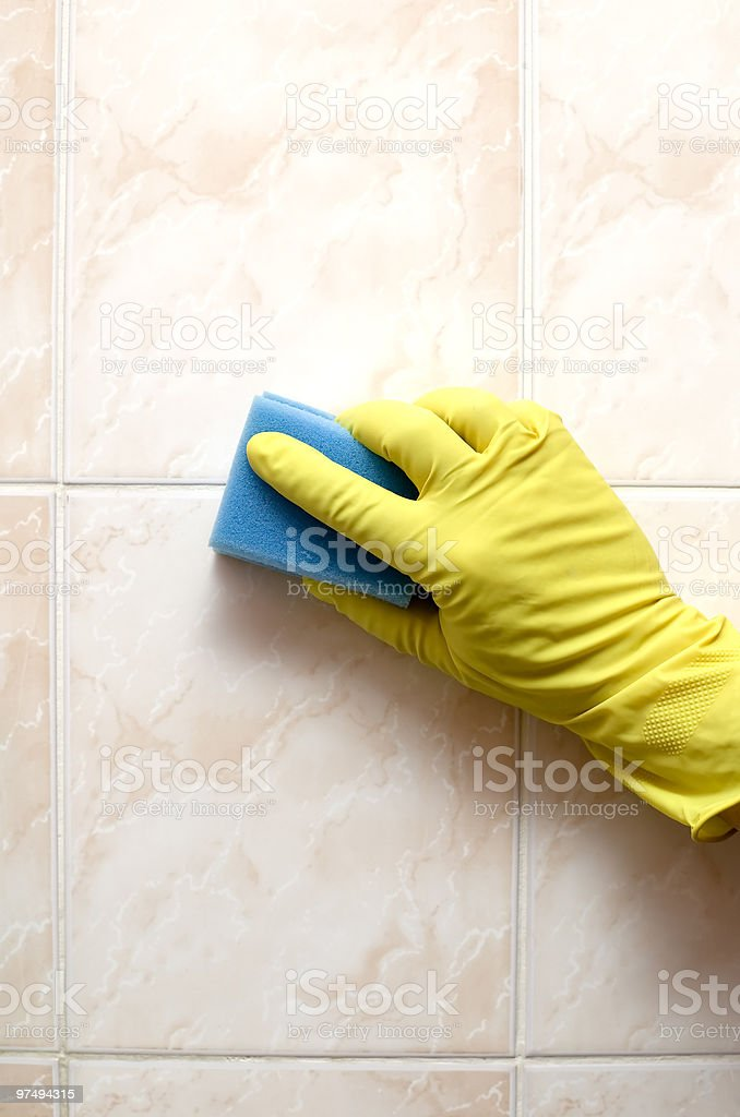 Cleaner with gloves  and blue sponge royalty-free stock photo