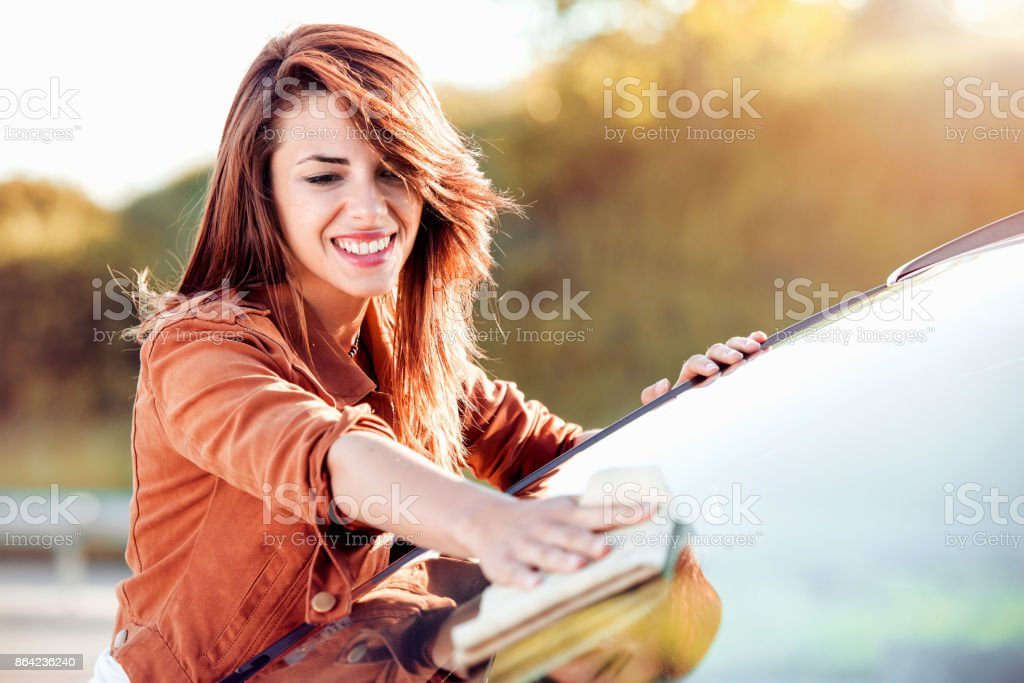 Cleaning a car royalty-free stock photo