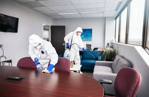 Cleaning And Disinfecting Office stock photo