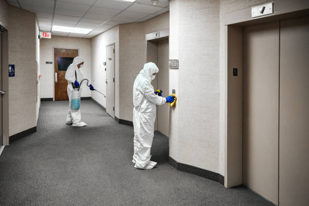 Cleaning And Disinfecting Office Two people in protective workwear cleaning and disinfecting offices. decontamination stock pictures, royalty-free photos & images