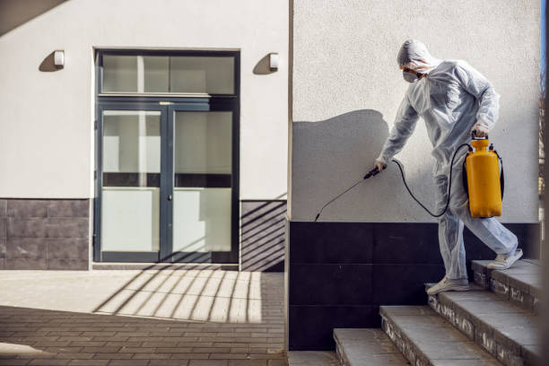 Cleaning and Disinfection outside around buildings, the coronavirus epidemic. Professional teams for disinfection efforts. Infection prevention and control of epidemic. Protective suit and mask. stock photo