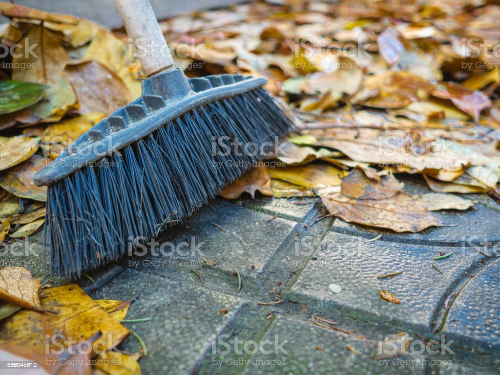 Cleaning autumn leaves with broom ot home`s backyard