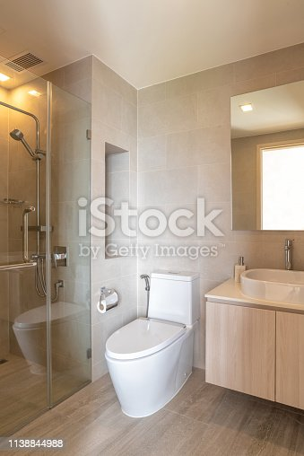 618327092istockphoto Cleaning Bathroom with shower and toilet in modern house 1138844988