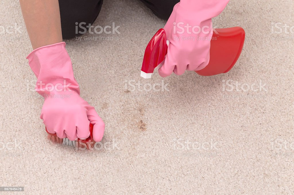 Cleaning carpet with brush and detergent foto royalty-free