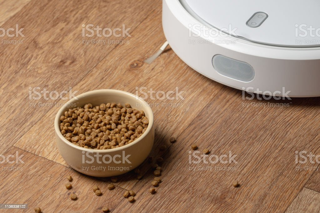 Cleaning for pets, scattered food on the floor.