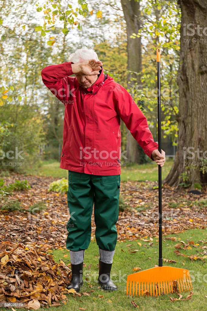 Cleaning garden from leaves stock photo