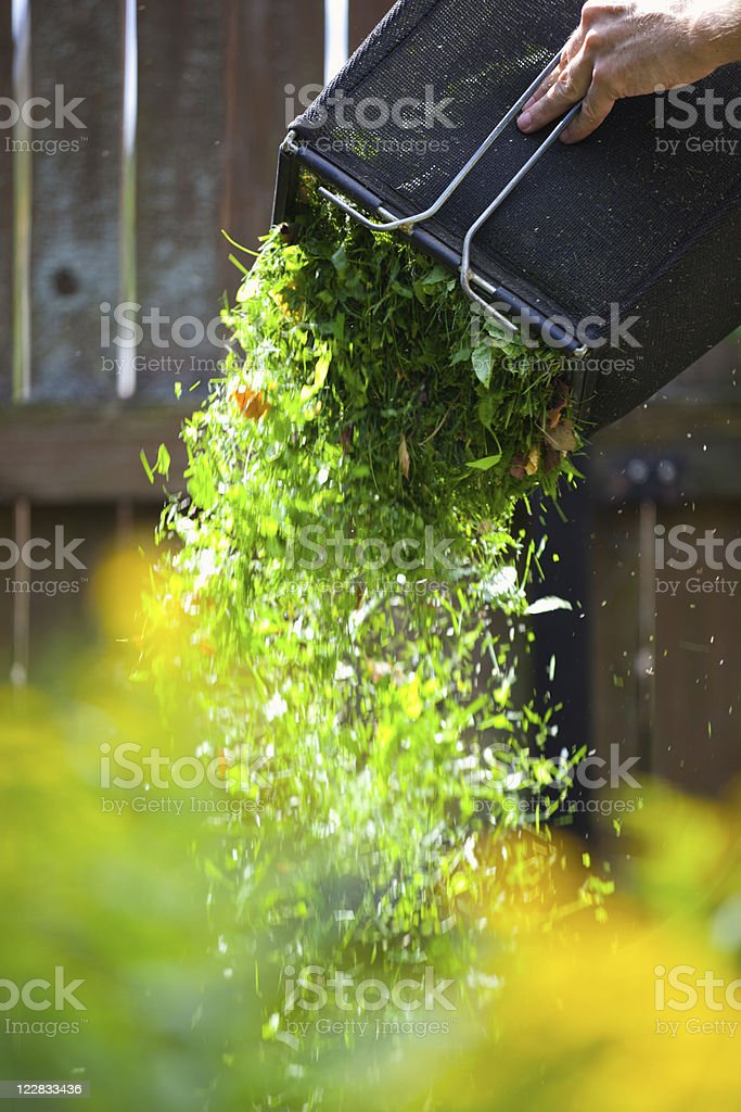 Cleaning grass box royalty-free stock photo