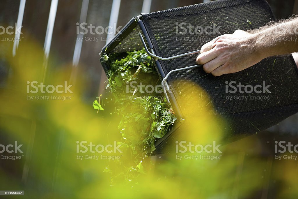 Cleaning grass box stock photo