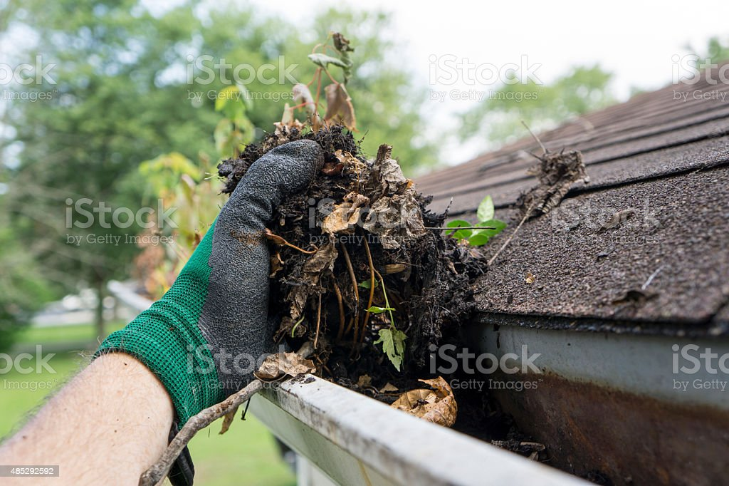 Cleaning Gutters During The Summer stock photo