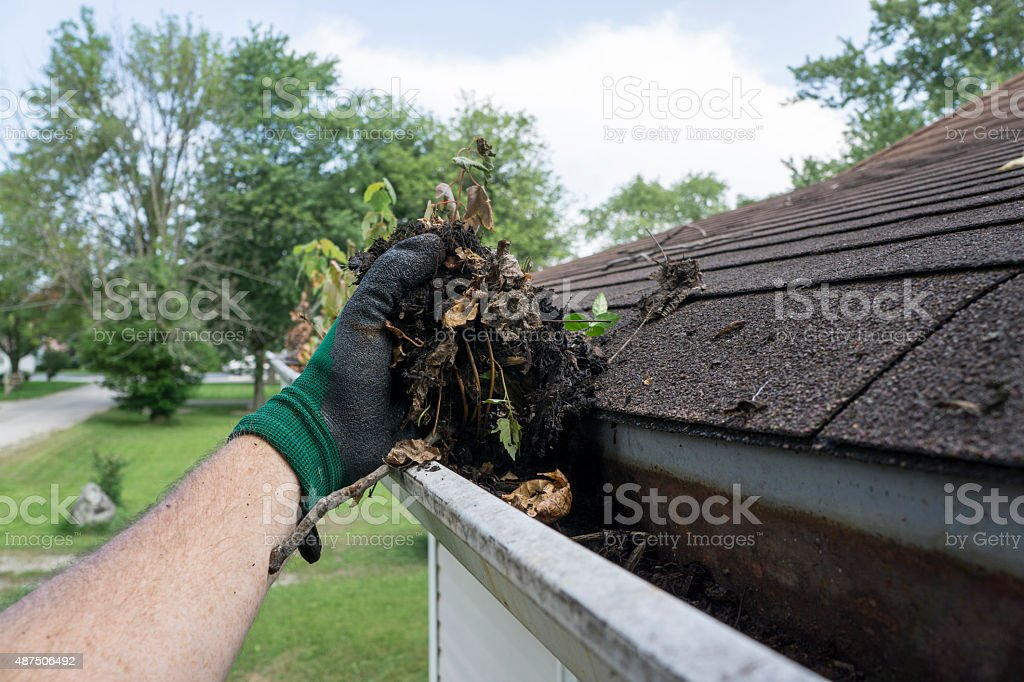 Cleaning Gutters Filled With Leaves & Sticks stock photo