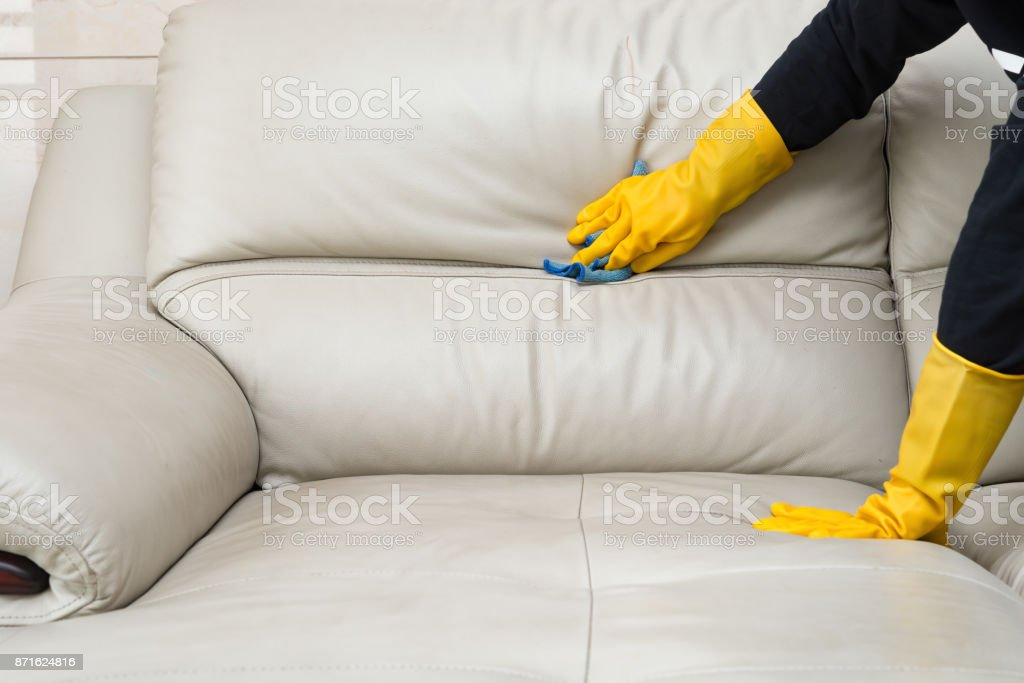 Tremendous Cleaning Leather Sofa At Home Stock Photo Download Image Spiritservingveterans Wood Chair Design Ideas Spiritservingveteransorg