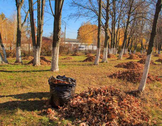 Cleaning of the autumn park. Heap of orange leaves and garbage bag in autumn park stock photo