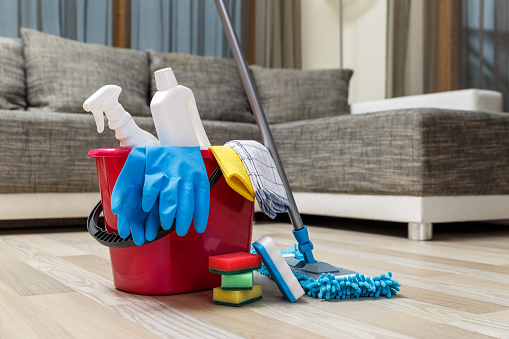 Cleaning service. Sponges, chemicals and mop.