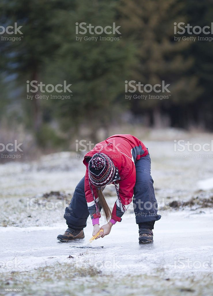 Cleaning snow off the ice on rink royalty-free stock photo