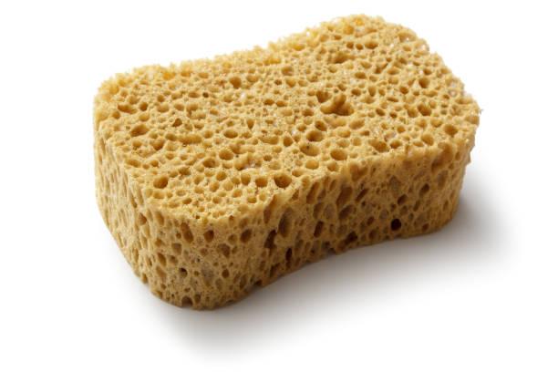 cleaning: sponge isolated on white background - spugna per le pulizie foto e immagini stock