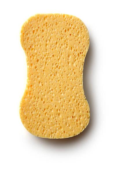 Cleaning: Sponge Isolated on White Background stock photo