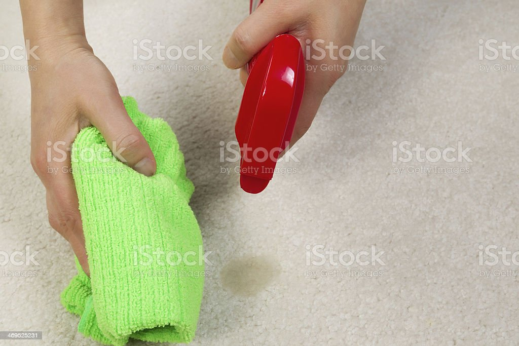Cleaning Stain in Carpet royalty-free stock photo