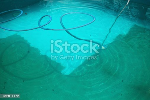 First clean of the pool in season. Extremely dirty pool