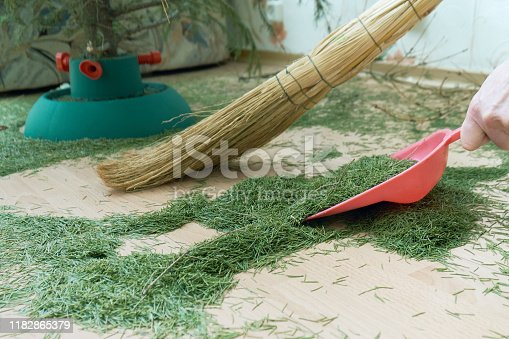 Woman sweeping the floor at home from dry fallen Christmas tree needles after New Year holidays manually using a broom and a scoop. View from above