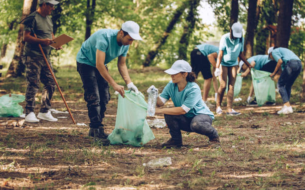 cleaning the park - community project stock photos and pictures