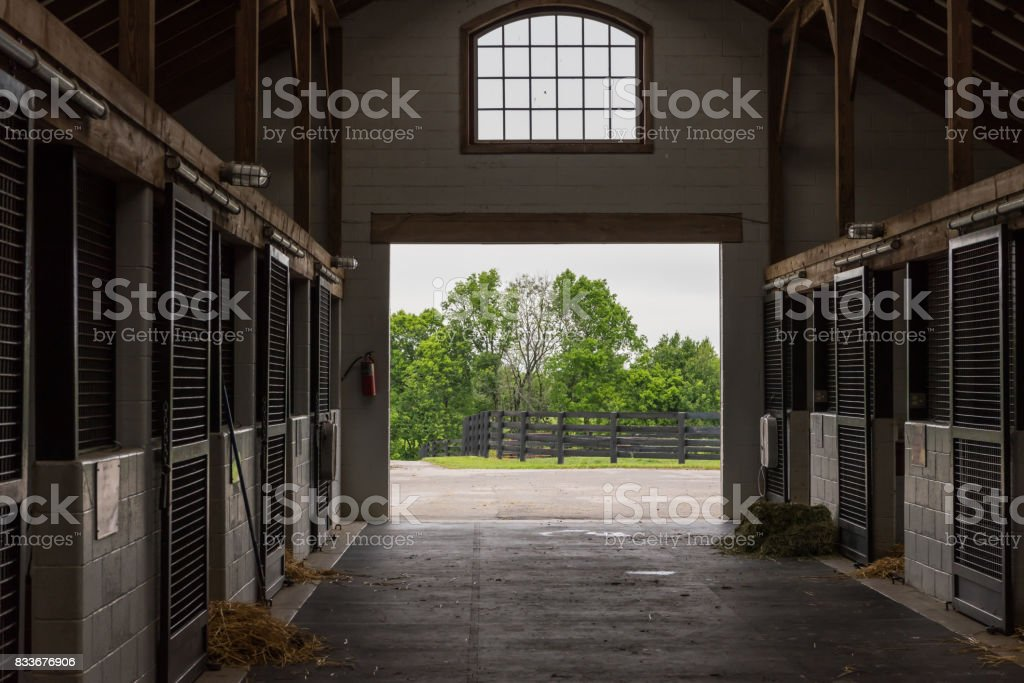 Cleaning Time in Horse Barn stock photo