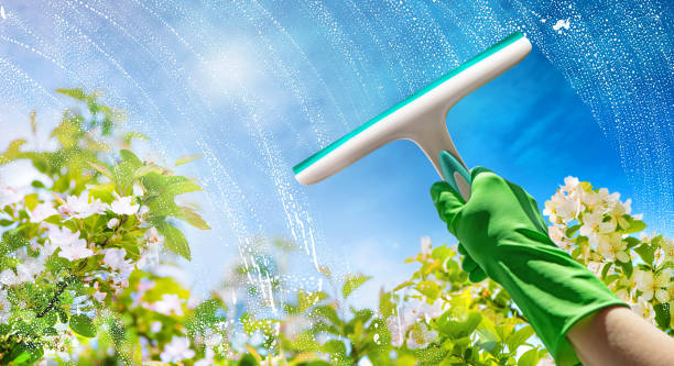 Cleaning window pane with detergent stock photo
