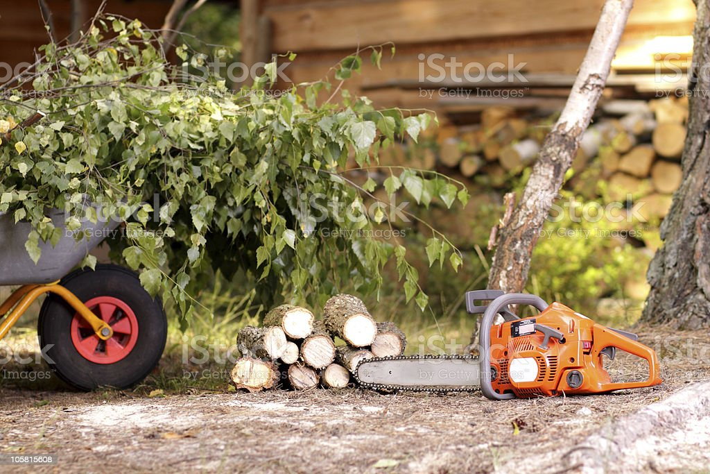 Cleanup in the garden royalty-free stock photo
