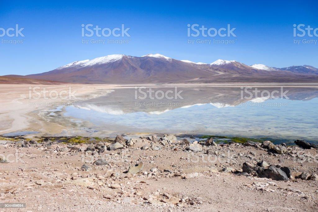 Clear altiplano laguna in sud Lipez reserva, Bolivia stock photo