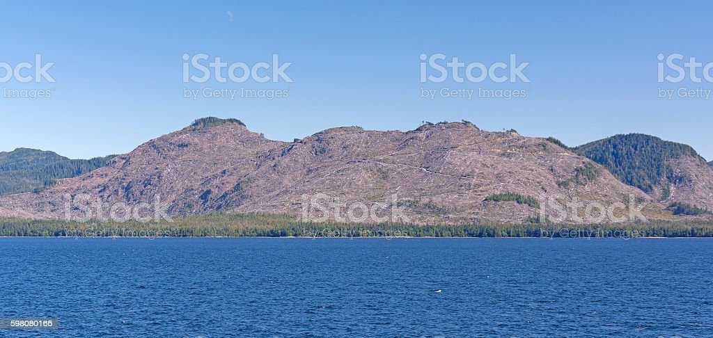 Clear Cutting on an Temperate Rain Forest Island stock photo
