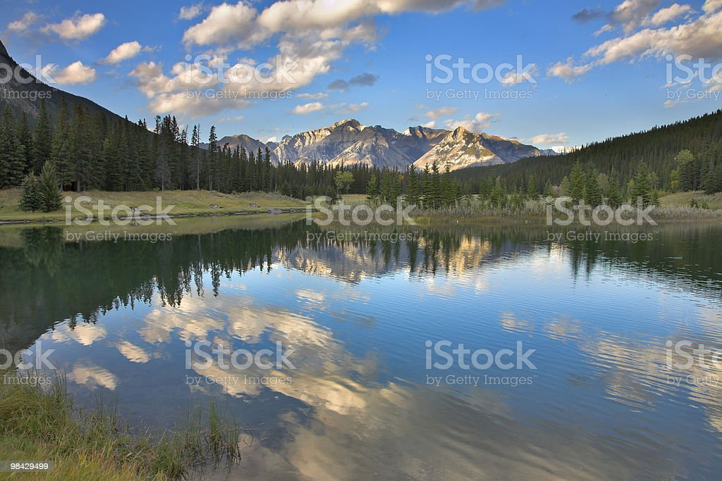 Clear morning. royalty-free stock photo